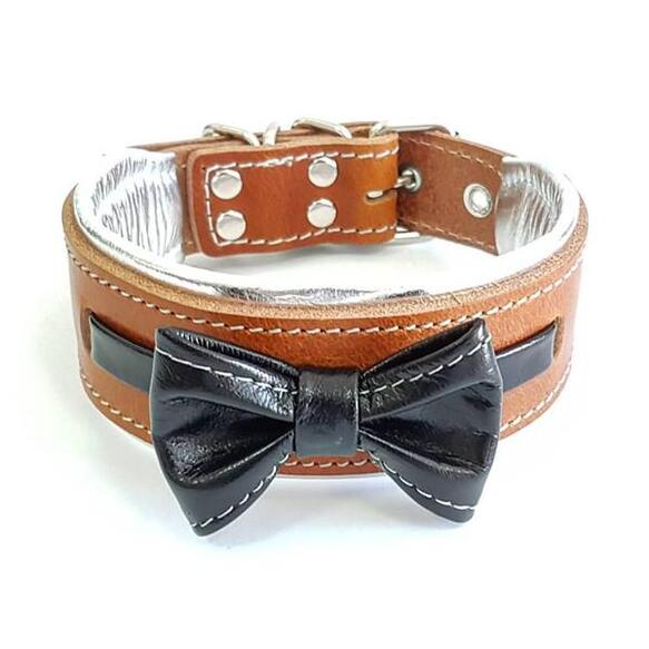 bowtie collar for small and medium sized breeds