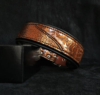 The ''Korona'' collar LIMITED