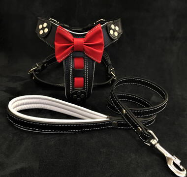 Bowtie leather Set- harness and lead