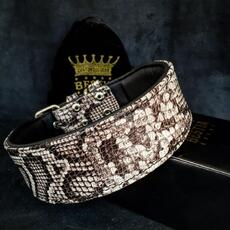 The ''Rock Python'' collar
