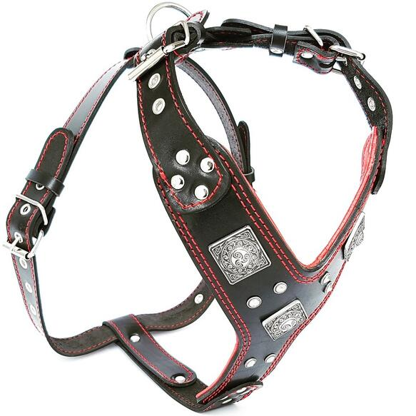 bestia leather harness