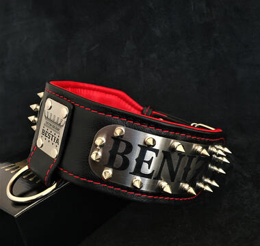 personalized leather colllar