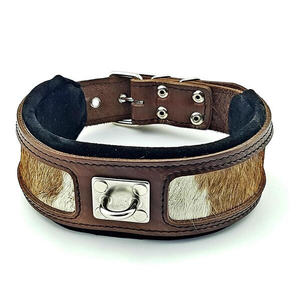 The buffalo big dogs collar