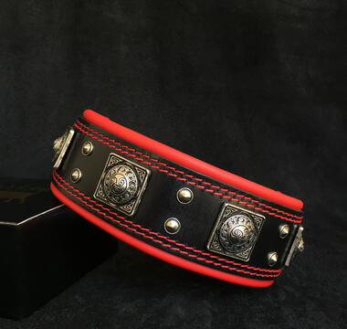 Eros collar for large and giant breeds