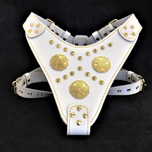 maximus harness white and gold