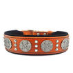 Bestia brown cane corso dog collar