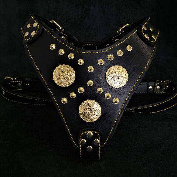 Maximus harness black and gold