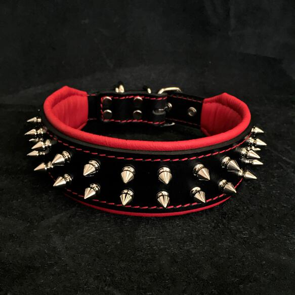 The Frenchie collar